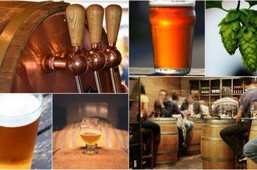 culture-biere-4